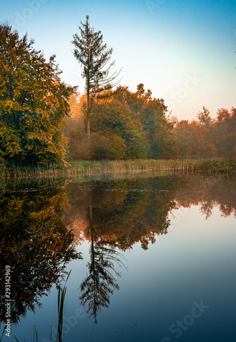 autumn landscape with lake and trees