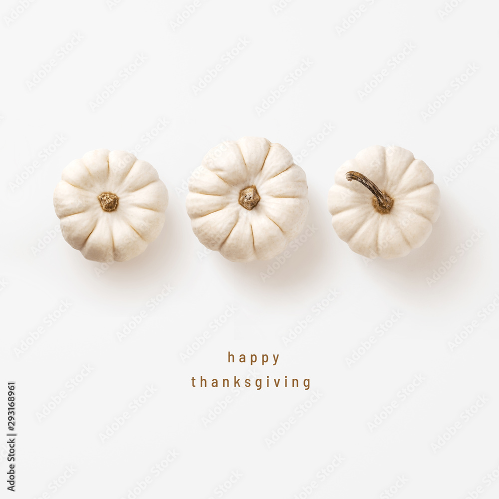 Fototapeta minimalist autumn / fall concept or greeting / invitation card for thanksgiving with three white pumpkins in a row - top view / flat lay