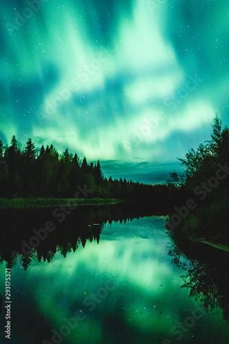 Foto auf Gartenposter Nordlicht Aurora Borealis in Finnish Lapland