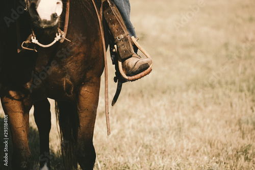 Fototapeta Western lifestyle shows boot in stirrup close up on horse during horseback riding, copy space on field background. obraz