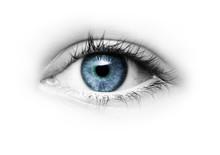 Auge Mit Grüner Pupille Freigestellt Auf Weißem Hintergrund