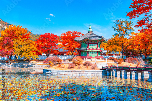 Beautiful  Autumn in Gyeongbokgung palace, Hyangwonjeong pavilion in Seoul of So Wallpaper Mural