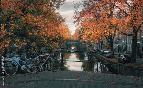 Amsterdam canal with its bridges in beautiful fall colors in the old center of A Canvas Print