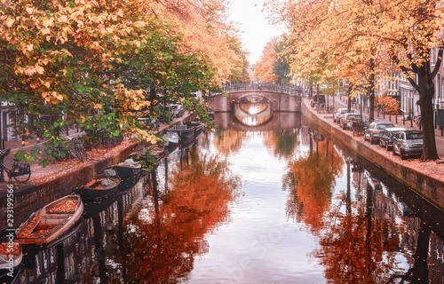 Amsterdam canal with its bridges in beautiful fall colors in the old center of A Wallpaper Mural