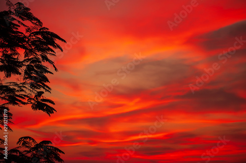Foto auf AluDibond Rot Dramatic sunset sky over a tropical forest.