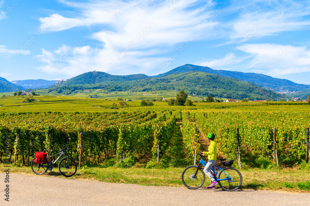 Fototapeta Young woman cyclist stopping by vineyards on Alsatian Wine Route near Ribeauville village, France