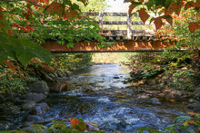 View Of A Small Bridge Under A...