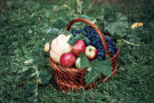 Basket With Fresh Beets, Carrots