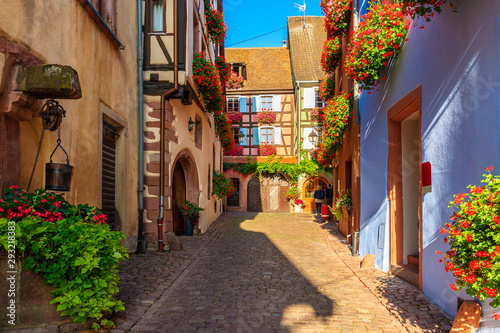 Narrow street and beautiful historic houses in old part of Riquewihr village, wi Wallpaper Mural