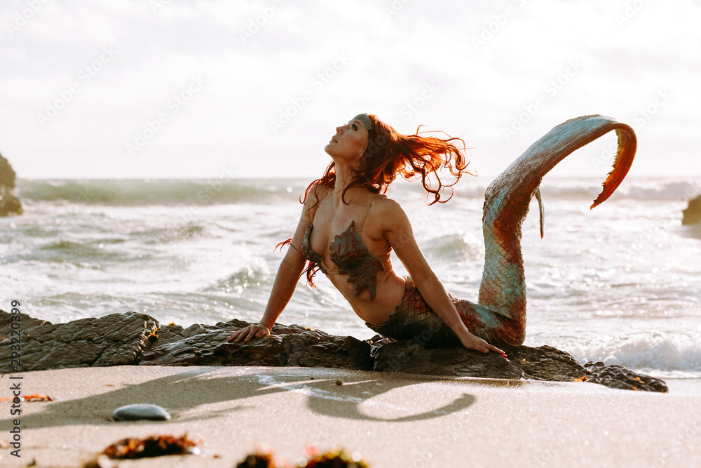 Fototapety, obrazy: Caucasian redhead woman with mermaid tail arches her back in the surf at sunset