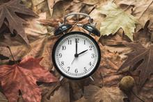 Classic Alarm Clock On Autumn ...