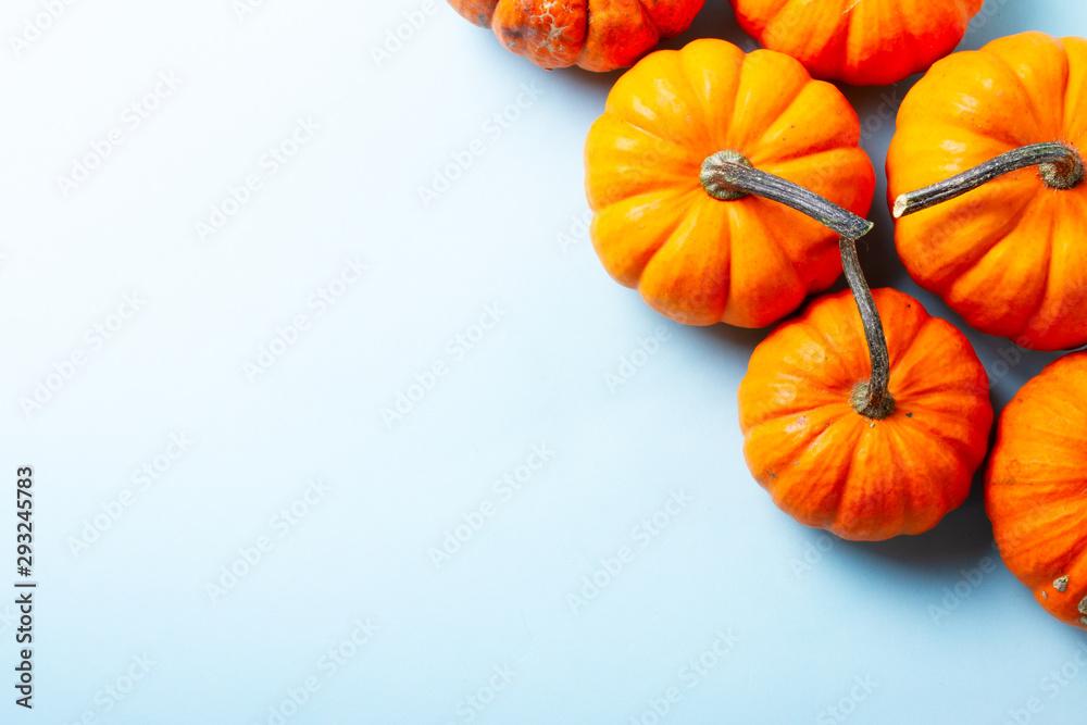 Fototapety, obrazy: pumpkin on table