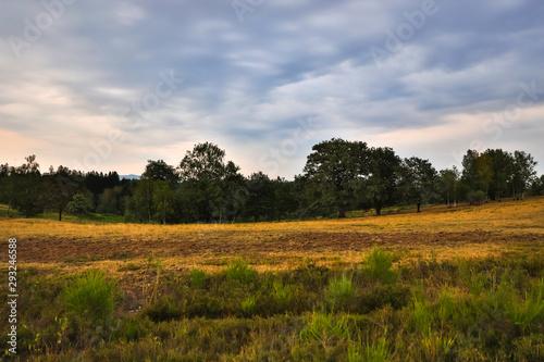 Obraz na plátně moorland landscape in hdr