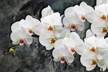 3d wallpaper texture, white orchids on abstract canvas textures. Grey background. Murals effect.
