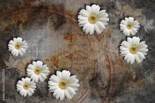 tapeta-3d-biale-rumianki-na-abstrakcyjnych-teksturach-na-plotnie-efekt-murali