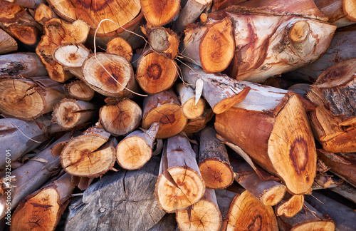 Photo sur Aluminium Texture de bois de chauffage Background of cutted logs. Firewood stack natural background