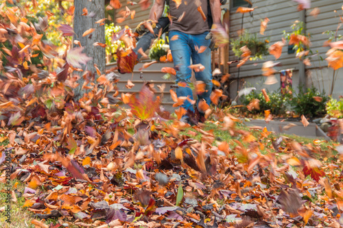 Photo Leaf blower in action moving colorful fall leaves from residential lawn with int