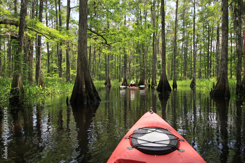 Kayakers on Fisheating Creek, Florida on calm early summer afternoon Canvas-taulu
