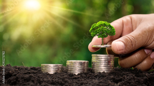 Fotografía Small green trees that are growing in the hands of people on the gold coin pile, different from the bank financial concept