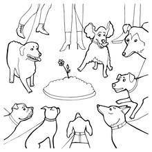 Black And White Cartoon Vector Illustration Of Evening Dogs Walk For Coloring Book