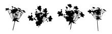 Set Of Silhouettes Flowers Isolated On White. Vector Illustrations