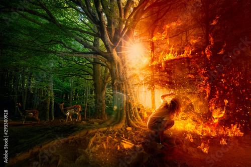 Forest fires. Destruction of nature Billede på lærred