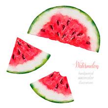 Watermelon. Watercolor Waterme...