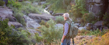 Back View Of Tourist Man With A Gray Beard With A Backpack On His Shoulders Against The Backdrop Of The Gorge, Rocks And Stones, The Concept Of Tourism And Outdoor Activities In Old Age Closeup