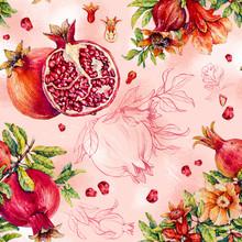 Pomegranate.  Watercolor Illustration.