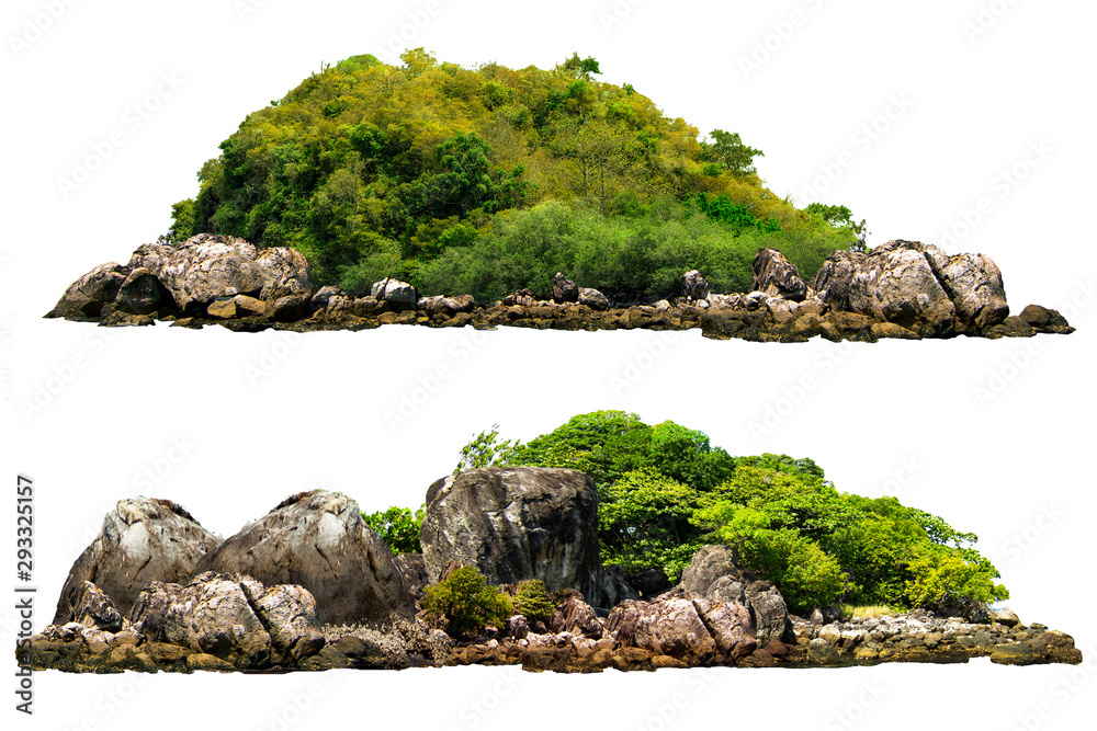 Fototapeta The trees on the island and rocks. Isolated on White background