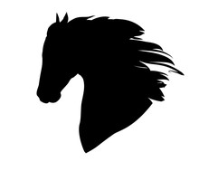 Hand Drawn Black Vector Horse ...