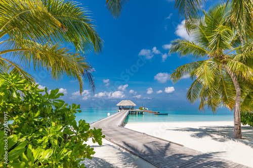 Foto auf Gartenposter Baume Maldives beach with luxurious water villas and loungers beautiful tropical scene. Luxury summer travel destination background concept. Beach mood for summer vacation or holiday design