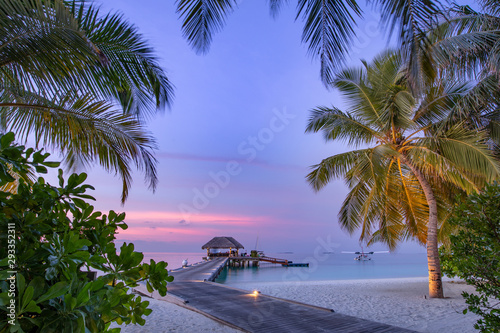 Obraz Maldives resort island in sunset with wooden jetty, amazing colorful sky. Perfect sunset beach scenery. Detail of palm leaves on foreground. Vacation and beach relaxation, summer holidays background - fototapety do salonu