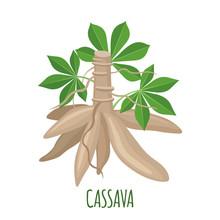 Cassava Tree Icon In Flat Styl...
