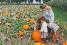 A Family Exploring In The Pumpkin Patch In Fall.