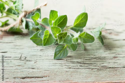Fotomural  Oregano on a wooden background. Aromatic herbs.