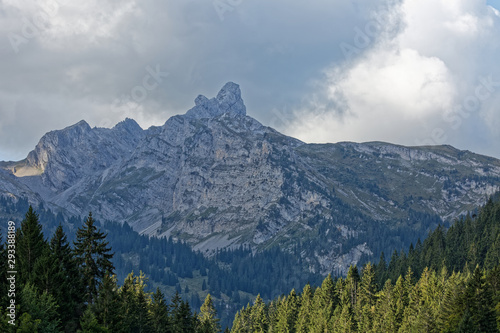Montagne de l'Oberland Bernois