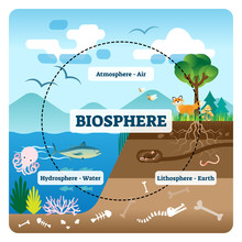 Biosphere Vector Illustration. Labeled All Natural Ecosystems With Wildlife