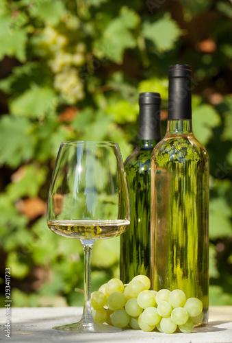 Fototapeta  White grape and wine