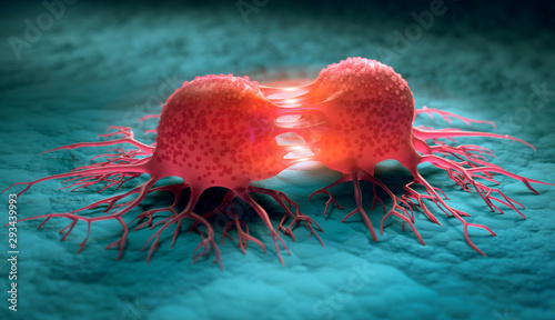 Dividing cancer cells - 3D illustration Wallpaper Mural