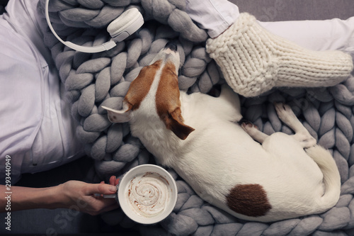 Woman in cozy home wear relaxing at home with sleeping dog , drinking cacao, top view. Soft, comfy lifestyle. - 293440949