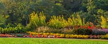 Panoramic Autumn Flower Displa...