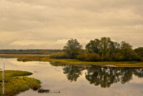 Reflection of autumn trees on riverbank. Moody sky Wallpaper Mural