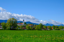 Grass And Trees In Front Of Town In Alpine Foothills, Konigsdorf, Bavaria, Germany