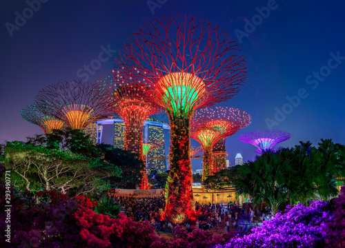 Photo Garden Rhapsody, colorful light show at the Supertree Grove Gardens by the Bay i