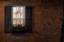 The Window Say Merry Christmas