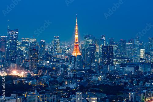 Fotografia 東京の夜景