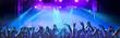 canvas print picture - Feiernde Menschen auf einem Konzert