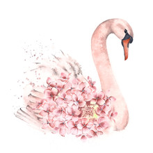 Illustration Of A Cute Swan With Flowers Decoration. Watercolor.
