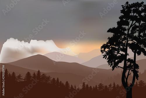 La pose en embrasure Gris black pine tree and brown mountain landscape
